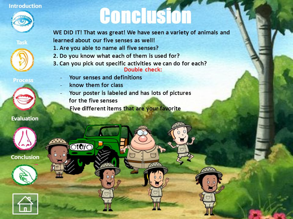 Task Process Evaluation Conclusion Introduction Evaluation How was your journey? What did you learn about the five senses on your way? Area012345 Tota