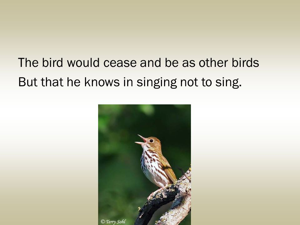 The bird would cease and be as other birds But that he knows in singing not to sing.