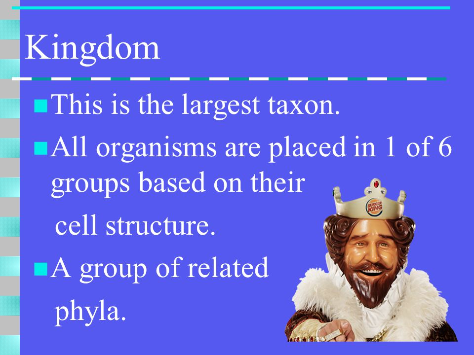 Kingdom This is the largest taxon.