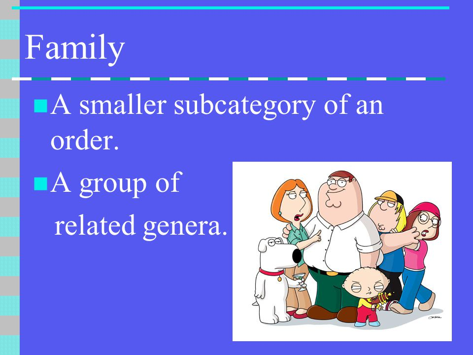 Family A smaller subcategory of an order. A group of related genera.