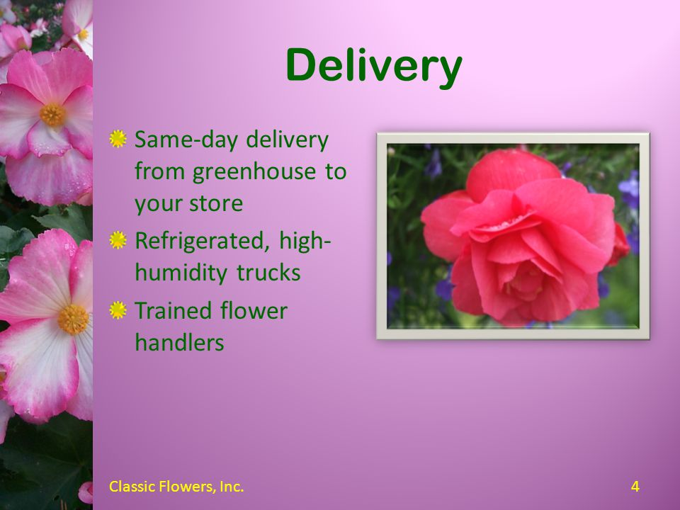 Our Services Delivery Setup and display Removal and disposal of expired flowers Special orders Complete accounting services 3Classic Flowers, Inc.