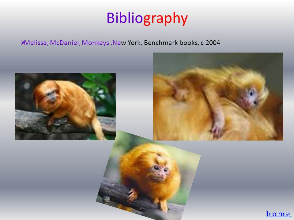 Bibliography Melissa, McDaniel, Monkeys,New York, Benchmark books, c 2004