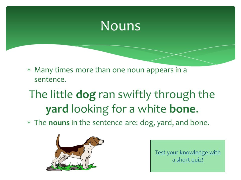 Nouns Examples: dog, fish, teacher, Ms.