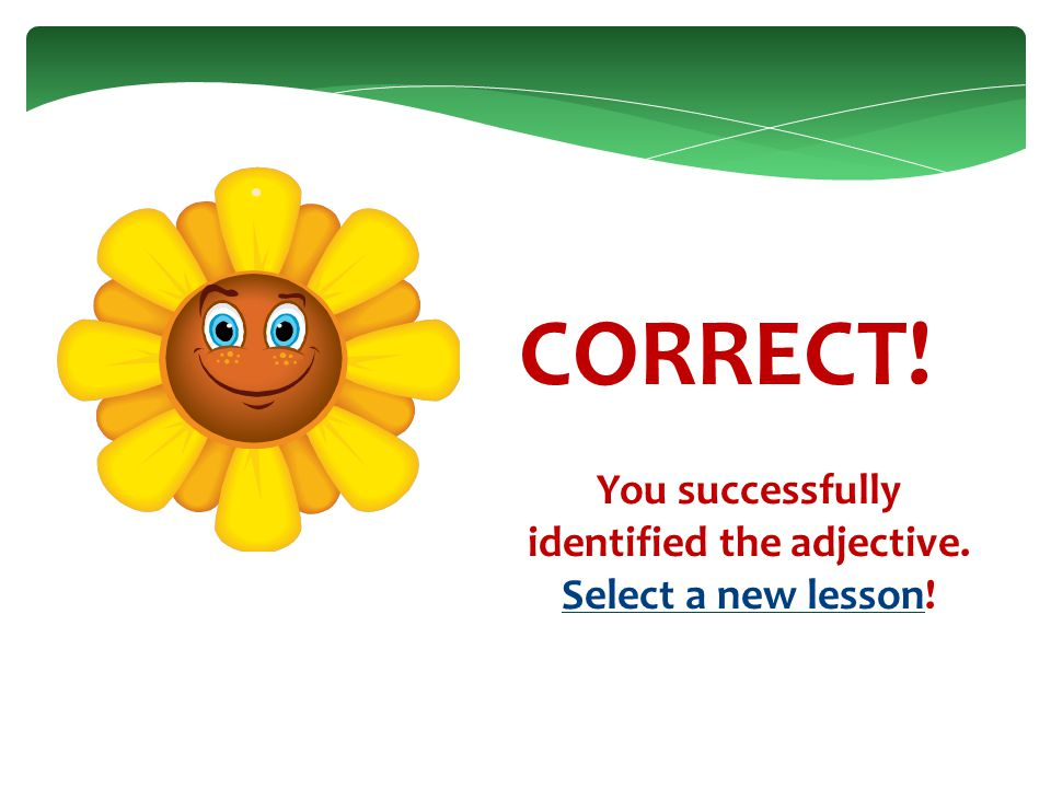 CORRECT! You successfully identified the adjective. Proceed to the next question!next question
