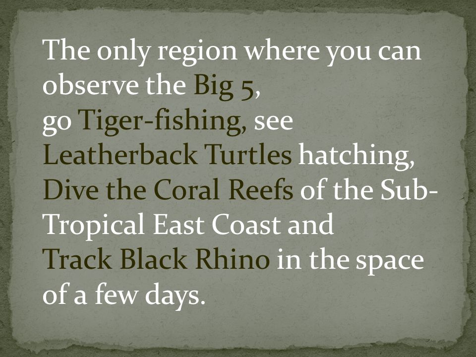 The only region where you can observe the Big 5, go Tiger-fishing, see Leatherback Turtles hatching, Dive the Coral Reefs of the Sub- Tropical East Co
