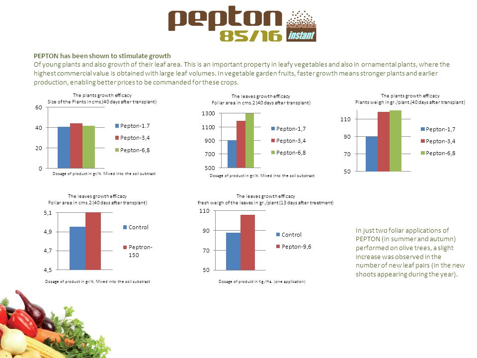 PEPTON has been shown to stimulate growth Of young plants and also growth of their leaf area. This is an important property in leafy vegetables and al