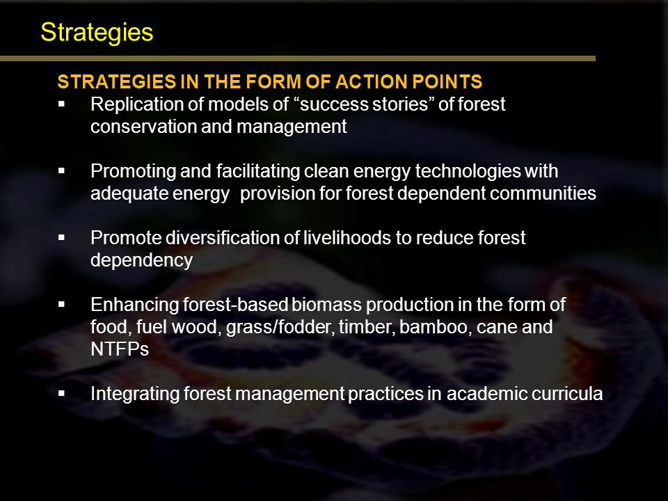 Strategies STRATEGIES IN THE FORM OF ACTION POINTS Replication of models of success stories of forest conservation and management Replication of model
