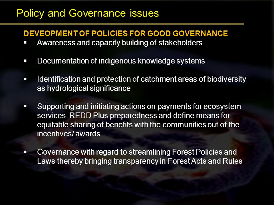 Policy and Governance issues DEVEOPMENT OF POLICIES FOR GOOD GOVERNANCE Awareness and capacity building of stakeholders Awareness and capacity buildin