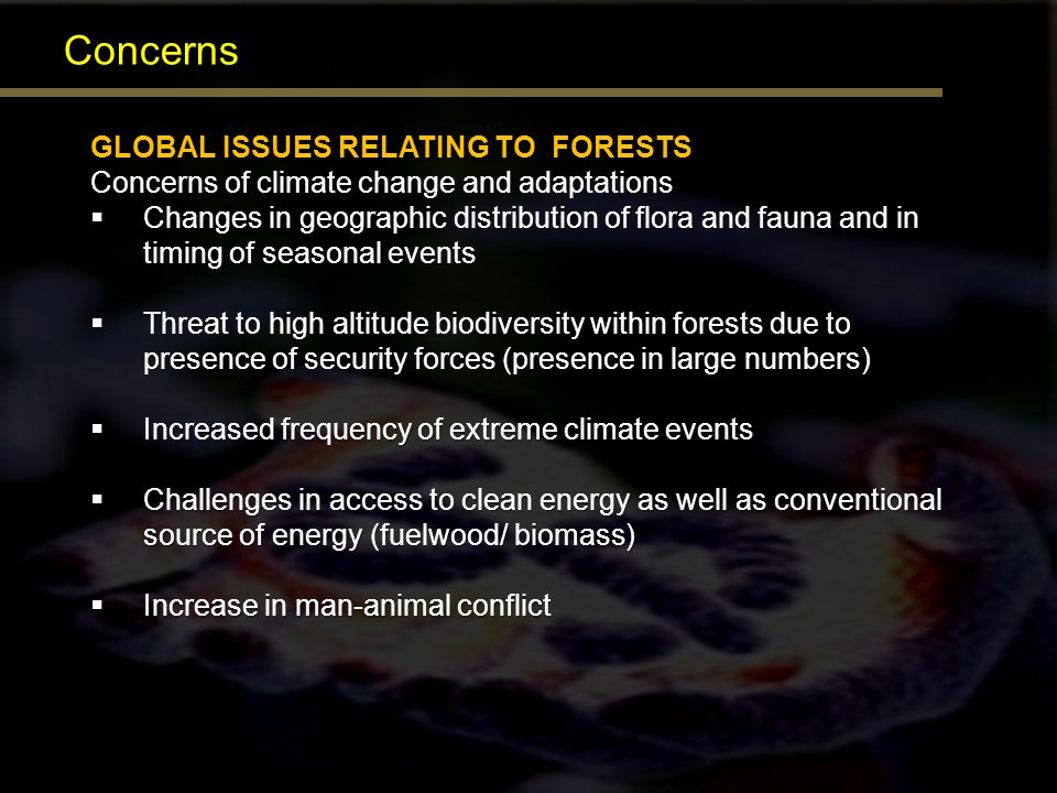 Concerns GLOBAL ISSUES RELATING TO FORESTS Concerns of climate change and adaptations Changes in geographic distribution of flora and fauna and in tim