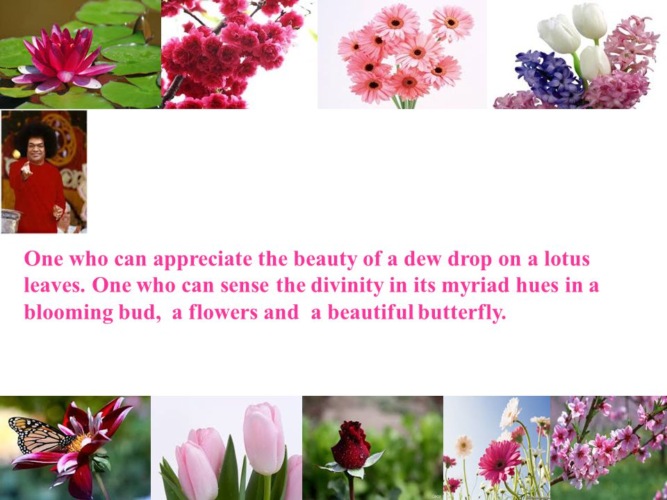 One who can appreciate the beauty of a dew drop on a lotus leaves. One who can sense the divinity in its myriad hues in a blooming bud, a flowers and
