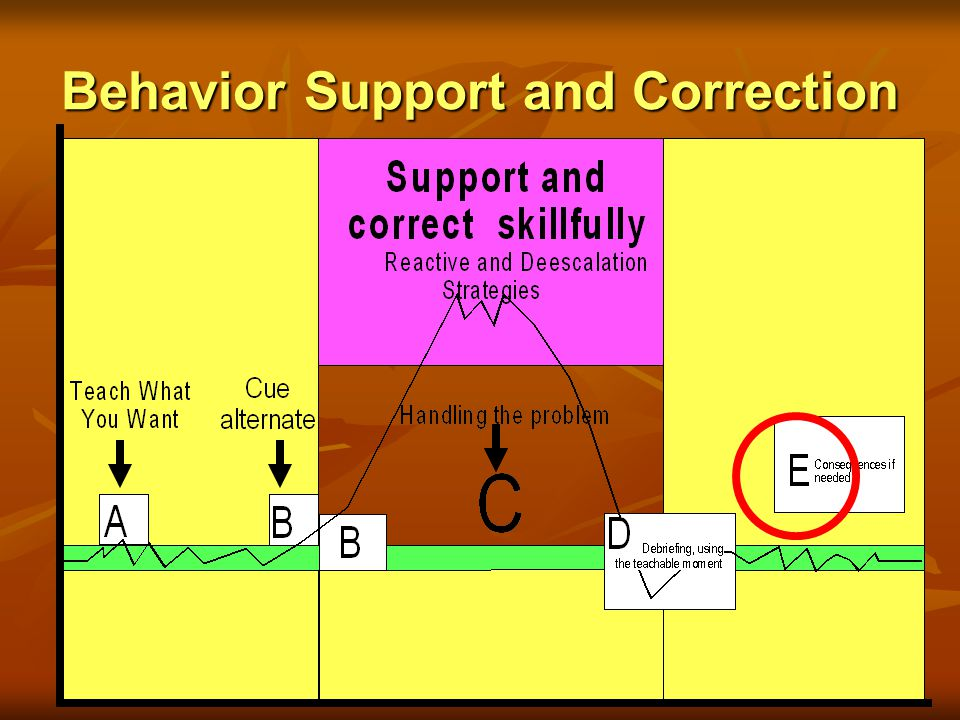 Section IV: Behavior Support and Correction that Minimally Disrupts the Flow of Instruction Phase E: Consequences (if needed)