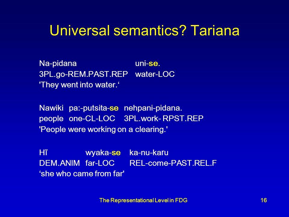 The Representational Level in FDG16 Universal semantics.