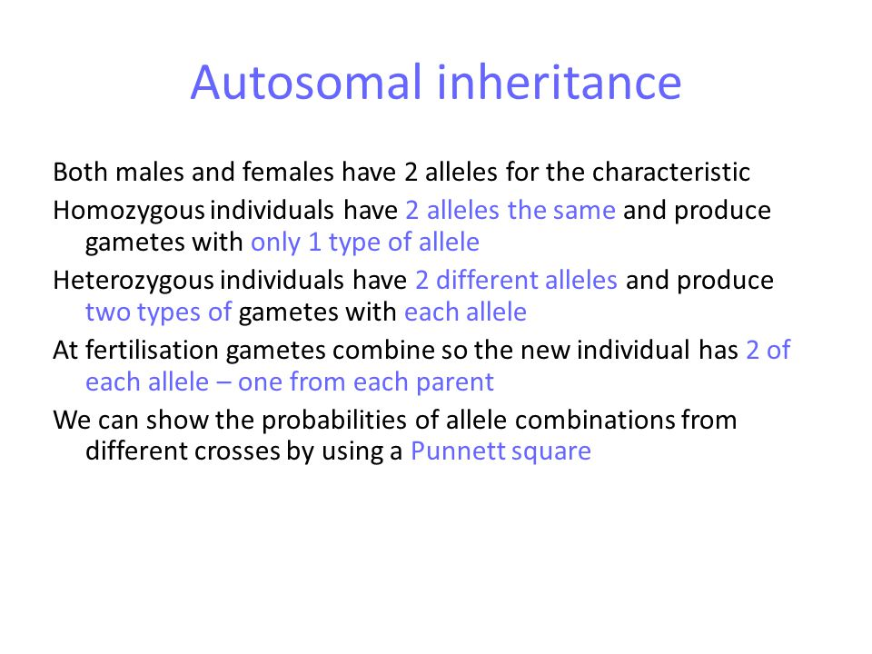 Autosomal inheritance Both males and females have 2 alleles for the characteristic Homozygous individuals have 2 alleles the same and produce gametes