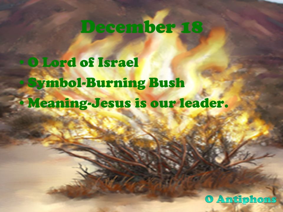 December 18 O Lord of Israel Symbol-Burning Bush Meaning-Jesus is our leader.