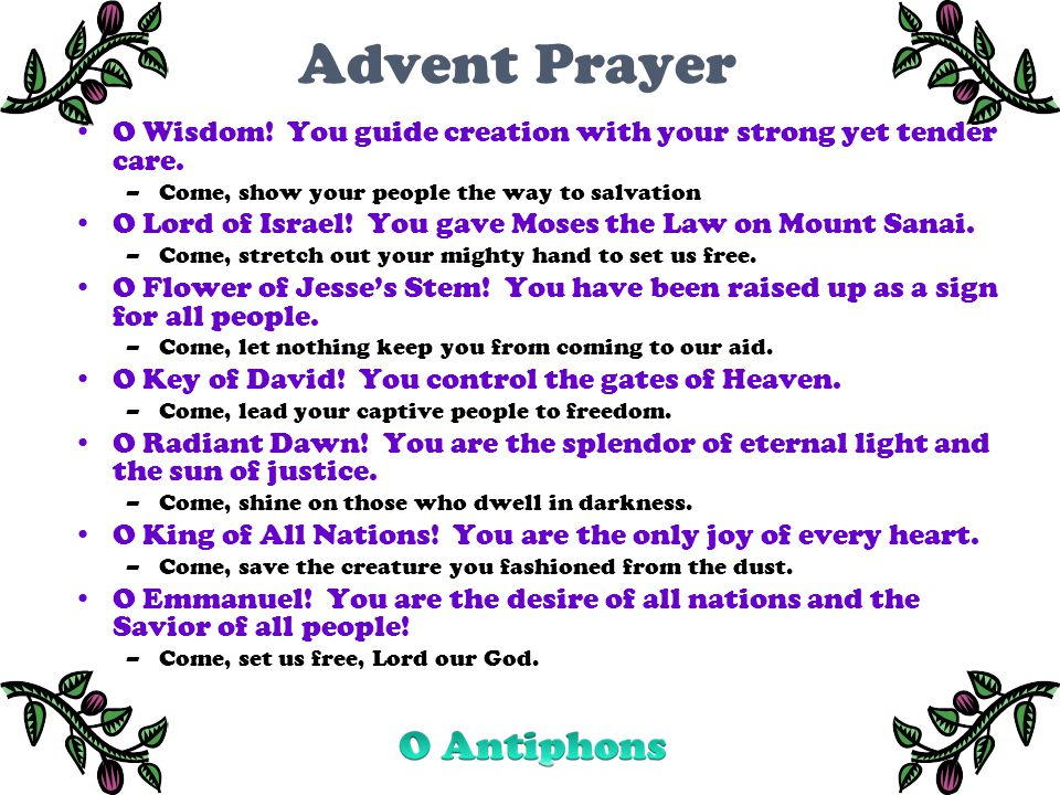 Advent Prayer O Wisdom. You guide creation with your strong yet tender care.