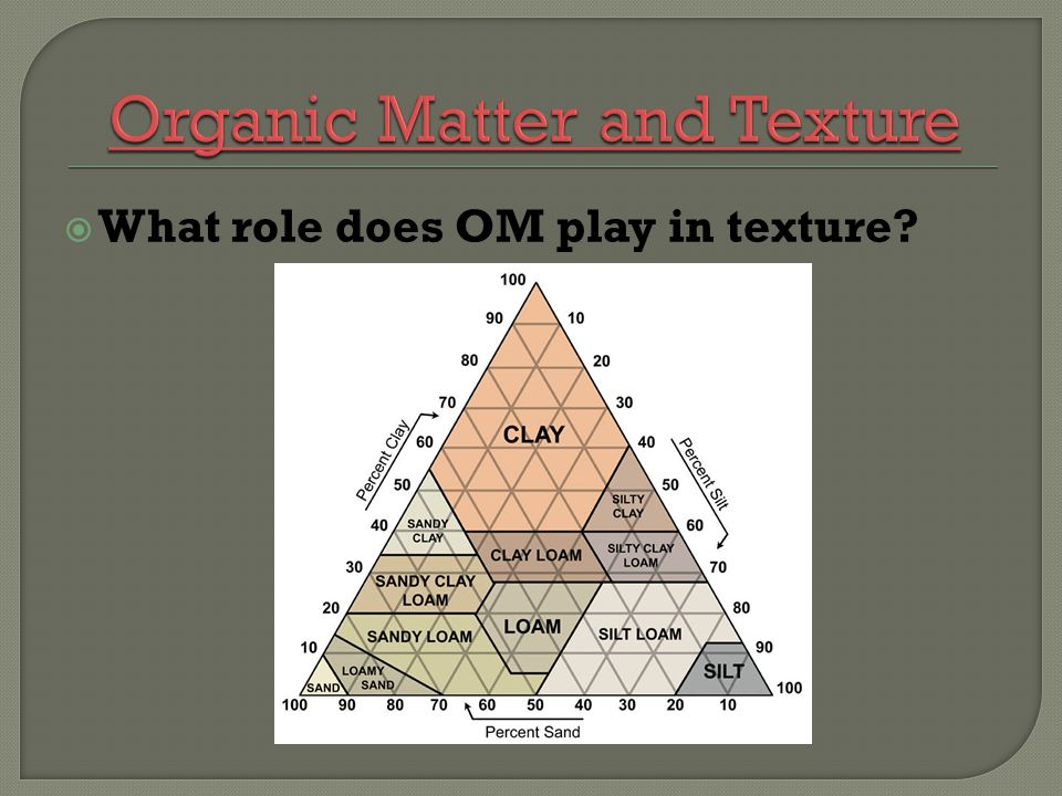 What role does OM play in texture?