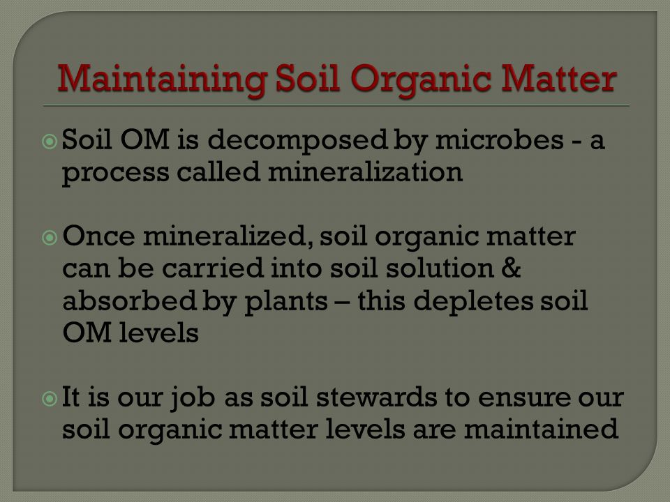 Soil OM is decomposed by microbes - a process called mineralization Once mineralized, soil organic matter can be carried into soil solution & absorbed