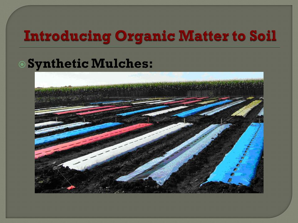 Synthetic Mulches: