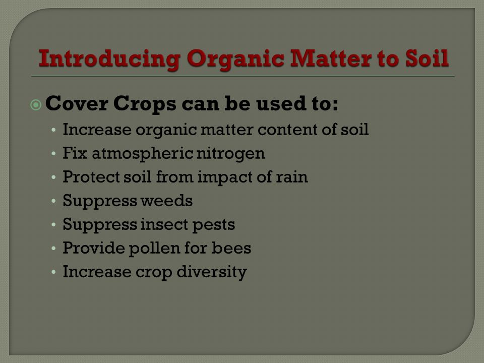 Cover Crops can be used to: Increase organic matter content of soil Fix atmospheric nitrogen Protect soil from impact of rain Suppress weeds Suppress