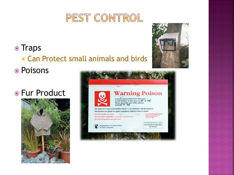 Traps Can Protect small animals and birds Poisons Fur Product