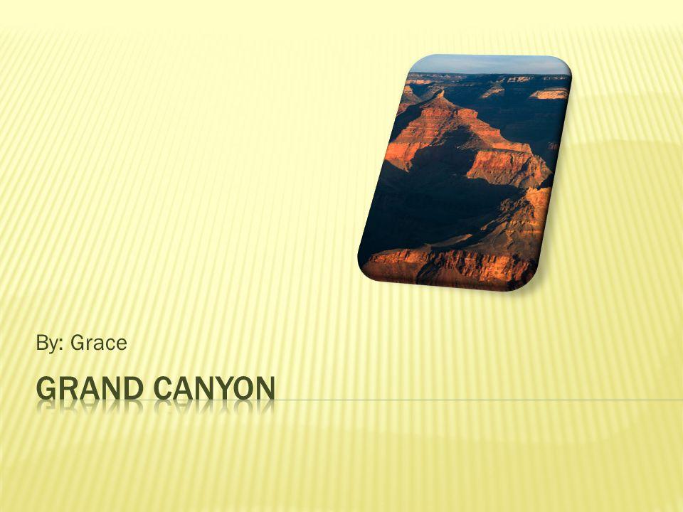 Riparian Areas Deserts Pinyon-Juniper Montane Forest