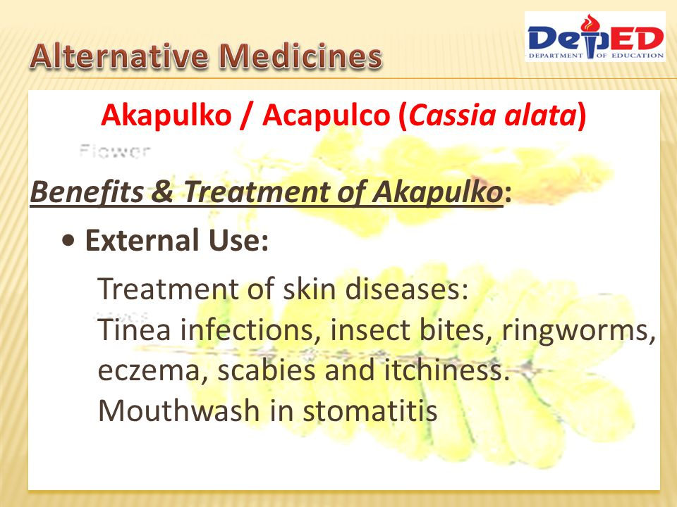 Akapulko / Acapulco (Cassia alata) Benefits & Treatment of Akapulko: Internal use: Expectorant for bronchitis and dyspnea Alleviation of asthma symptoms Used as diuretic and purgative For cough & fever As a laxative to expel intestinal parasites and other stomach problems.