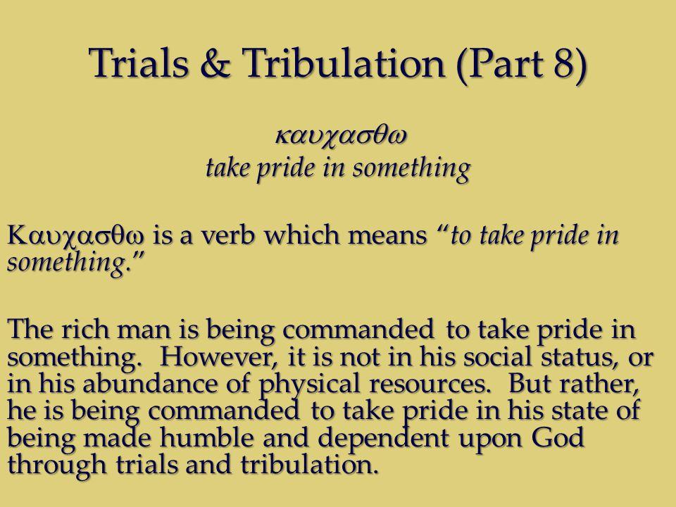 Trials & Tribulation (Part 8) take pride in something is a verb which means to take pride in something.