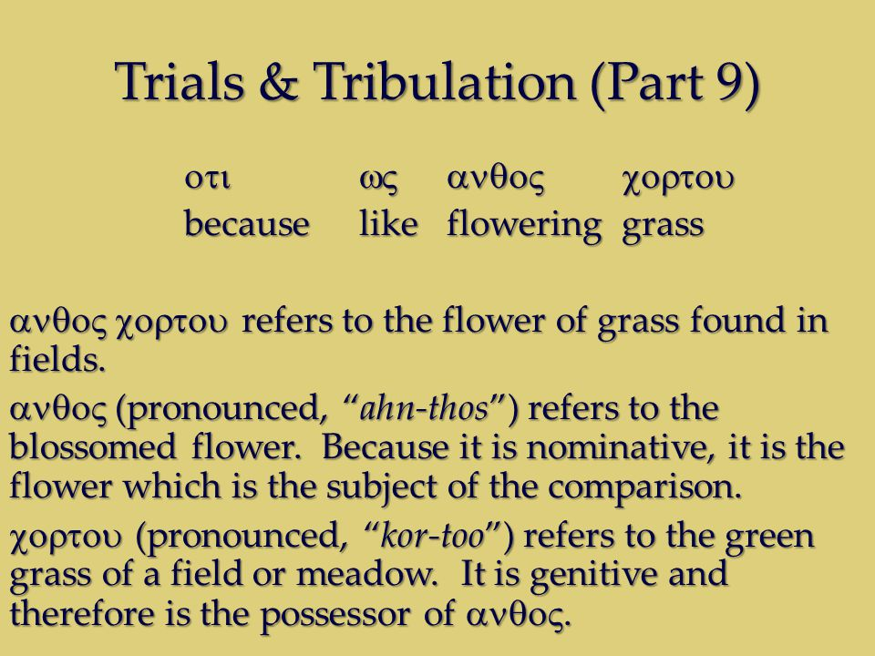 Trials & Tribulation (Part 9) becauselikefloweringgrass refers to the flower of grass found in fields.