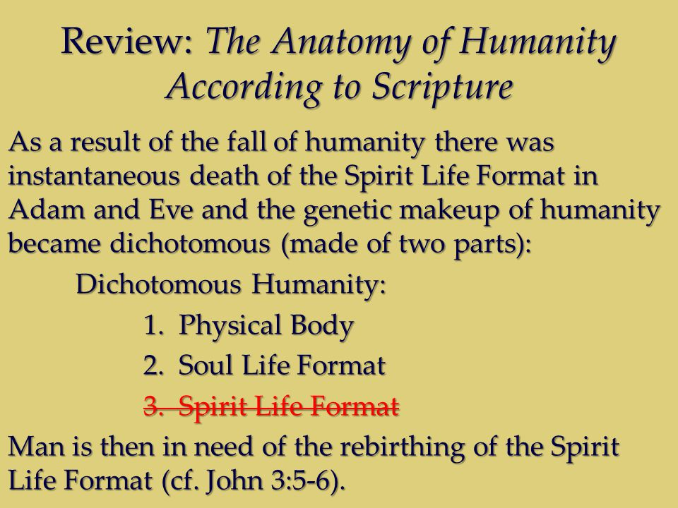 Review: The Anatomy of Humanity According to Scripture As a result of the fall of humanity there was instantaneous death of the Spirit Life Format in Adam and Eve and the genetic makeup of humanity became dichotomous (made of two parts): Dichotomous Humanity: 1.