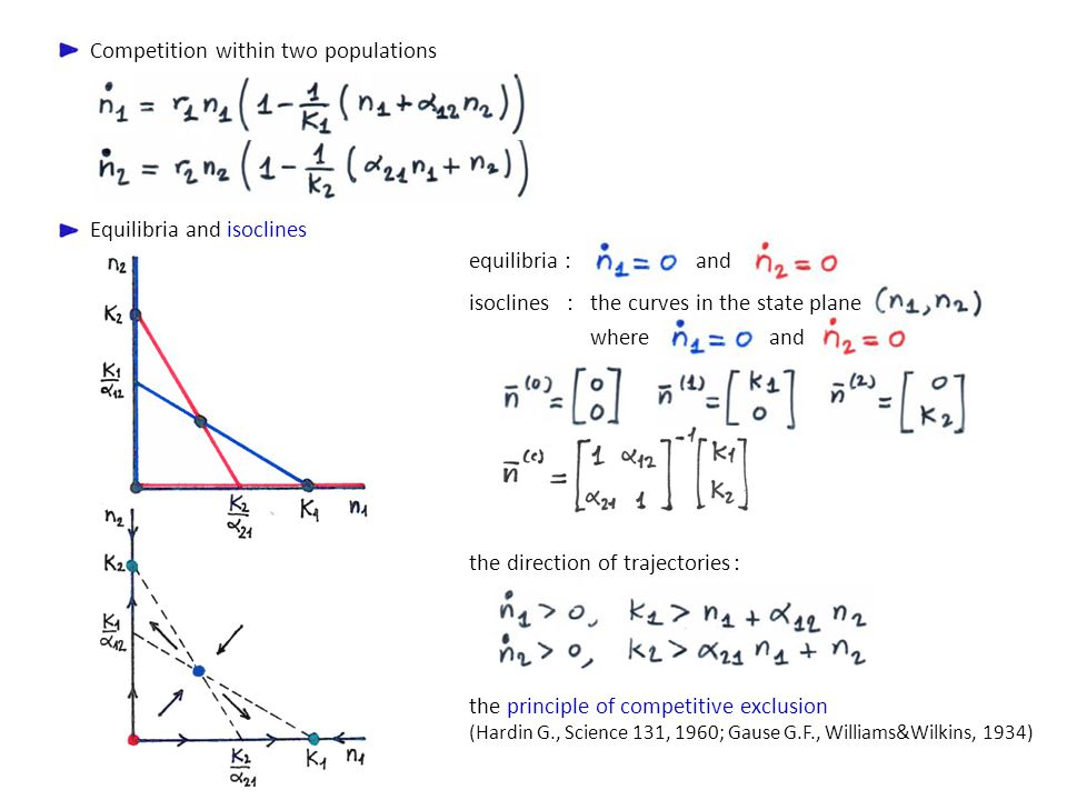 Competition within two populations Equilibria and isoclines equilibria :and the curves in the state plane where and isoclines : the direction of traje