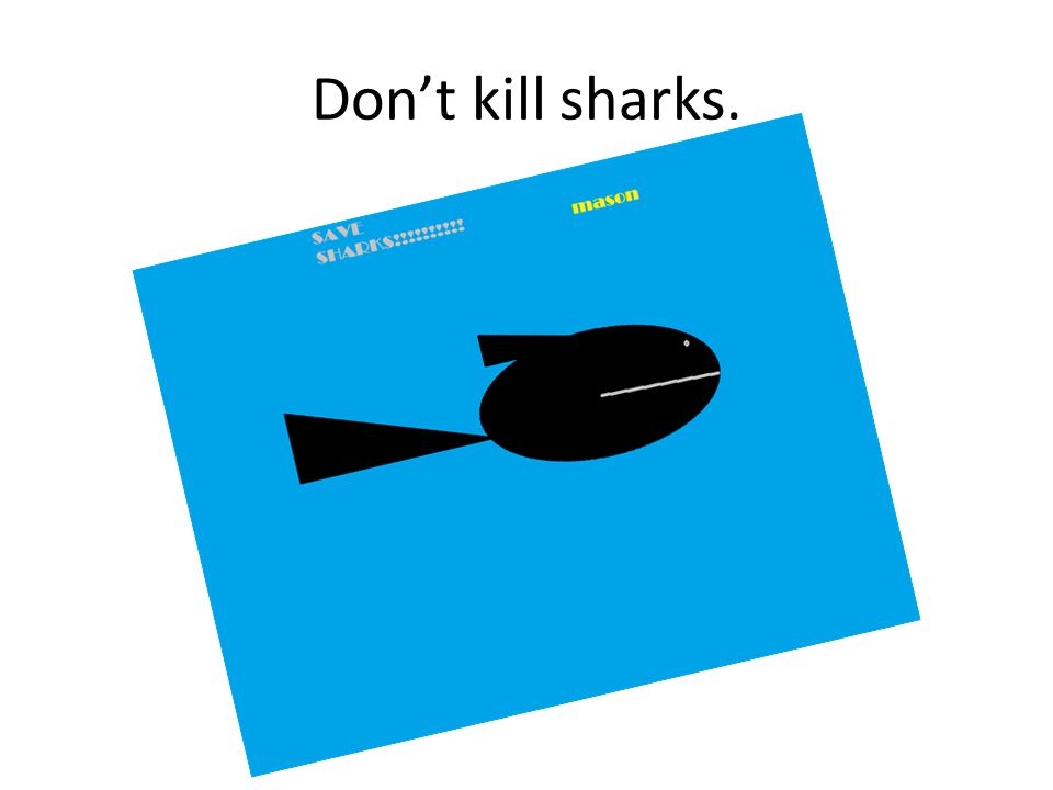 Dont kill sharks.