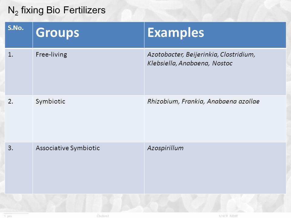 N 2 fixing Bio Fertilizers S.No.