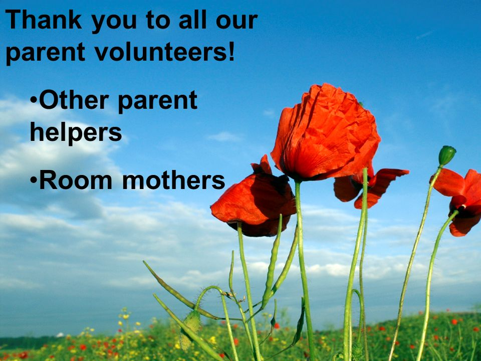 Thank you to all our parent volunteers! Other parent helpers Room mothers