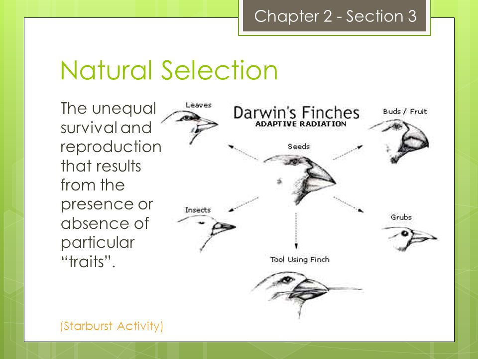 Natural Selection The unequal survival and reproduction that results from the presence or absence of particulartraits.