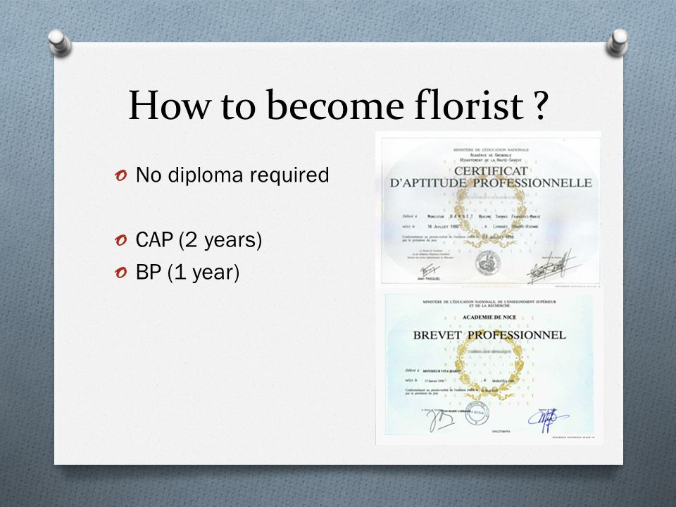 How to become florist o No diploma required o CAP (2 years) o BP (1 year)