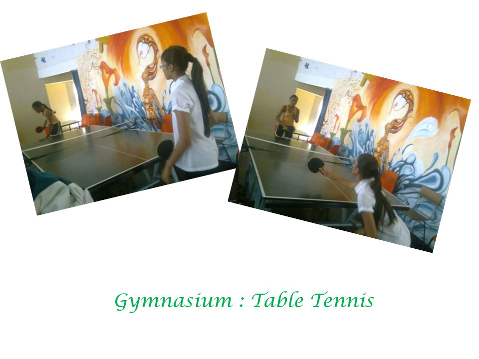Gymnasium : Table Tennis