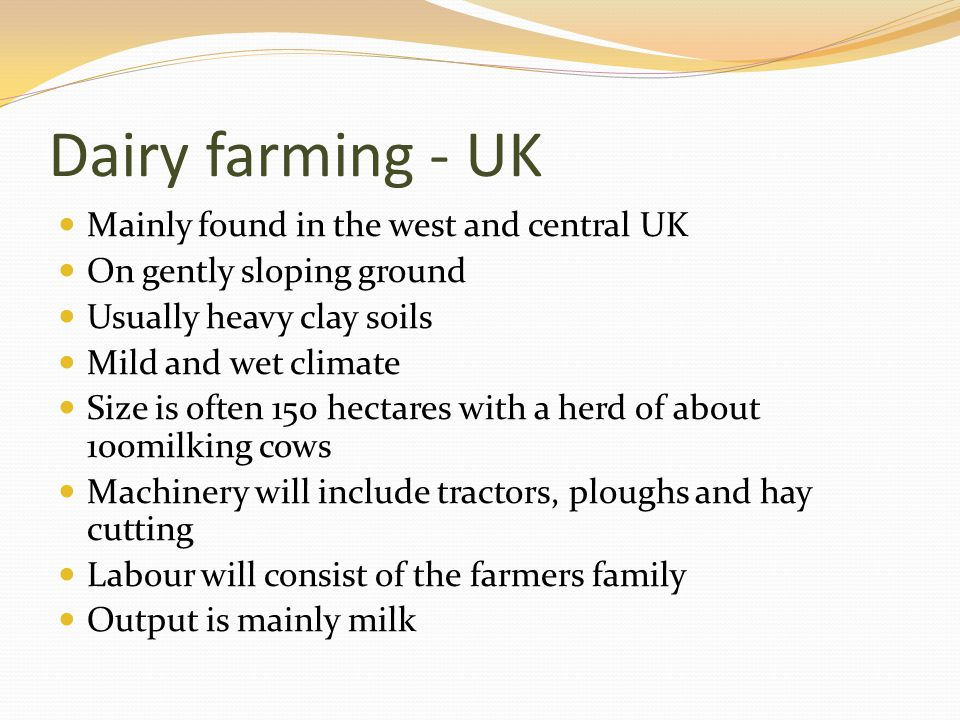 Dairy farming - UK Mainly found in the west and central UK On gently sloping ground Usually heavy clay soils Mild and wet climate Size is often 150 he