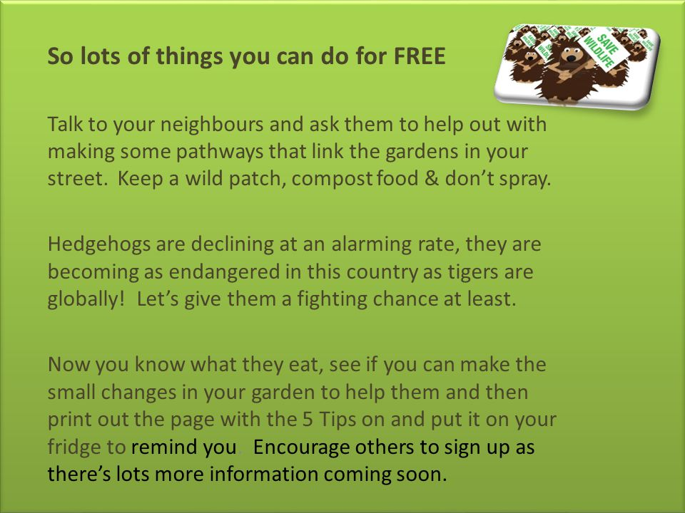 So lots of things you can do for FREE Talk to your neighbours and ask them to help out with making some pathways that link the gardens in your street.
