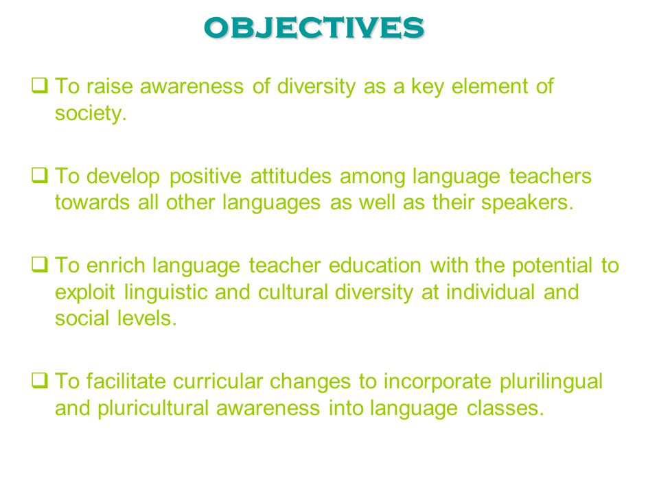 objectives To raise awareness of diversity as a key element of society.