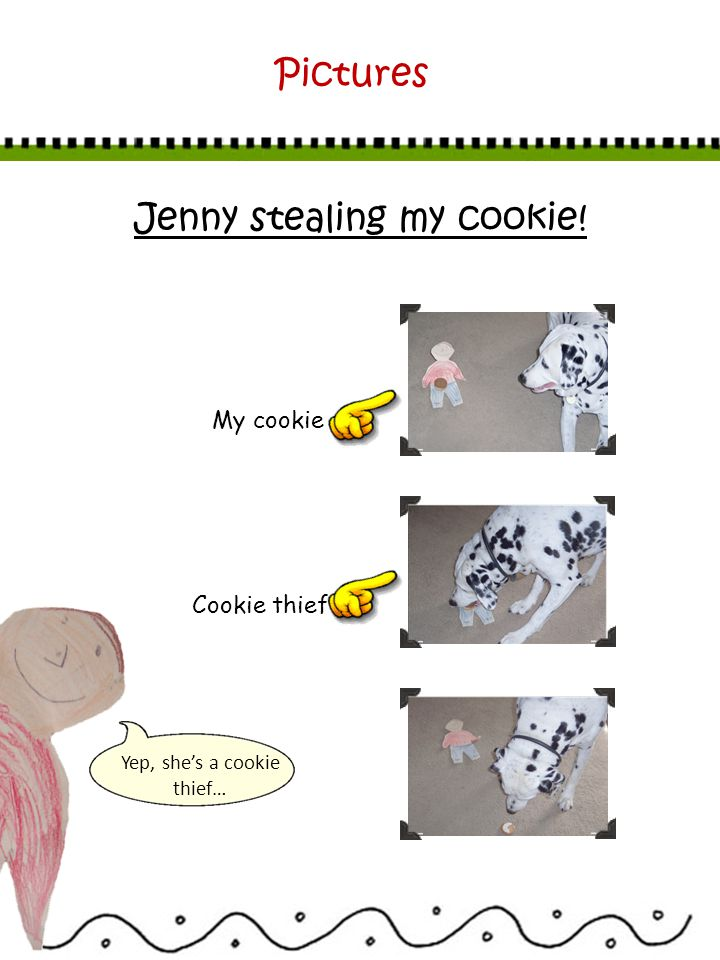 Jenny stealing my cookie! Yep, shes a cookie thief… Pictures My cookie Cookie thief