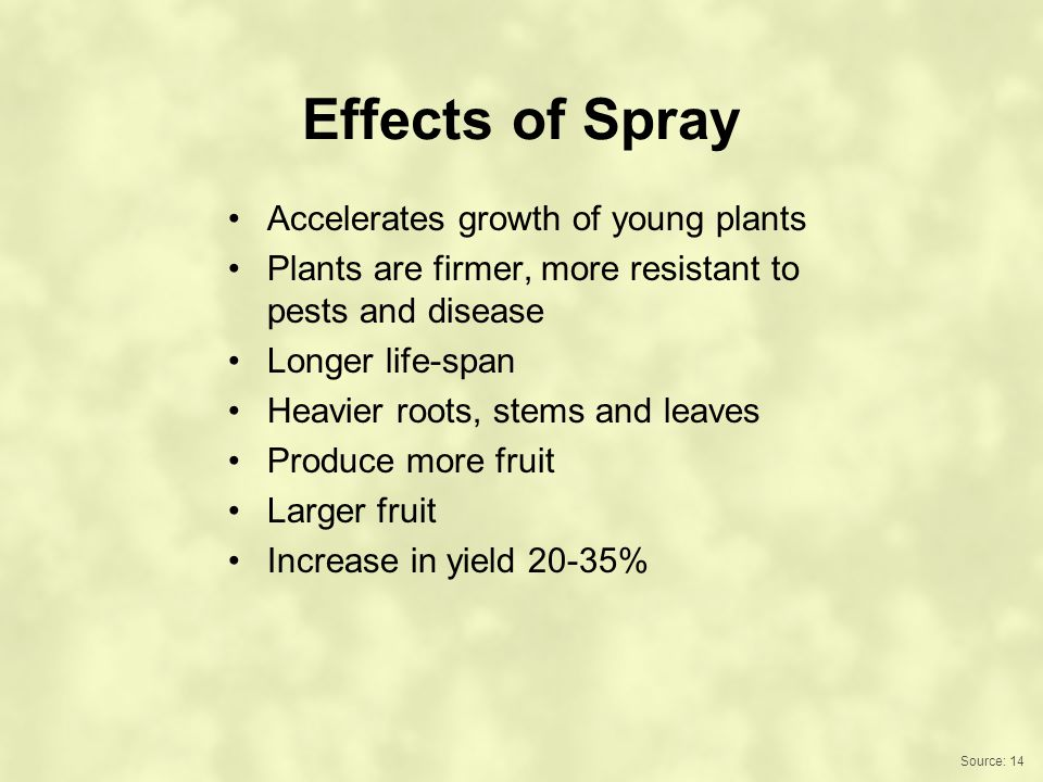 Effects of Spray Accelerates growth of young plants Plants are firmer, more resistant to pests and disease Longer life-span Heavier roots, stems and leaves Produce more fruit Larger fruit Increase in yield 20-35% Source: 14