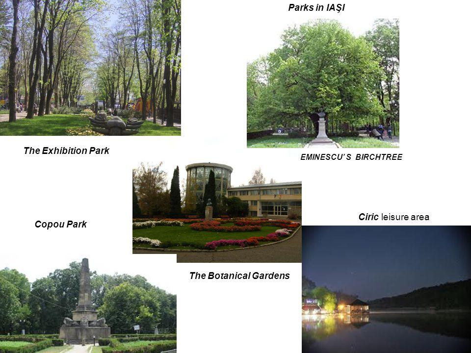 Ciric leisure area The Exhibition Park EMINESCU S BIRCHTREE The Botanical Gardens Copou Park Parks in IAŞI