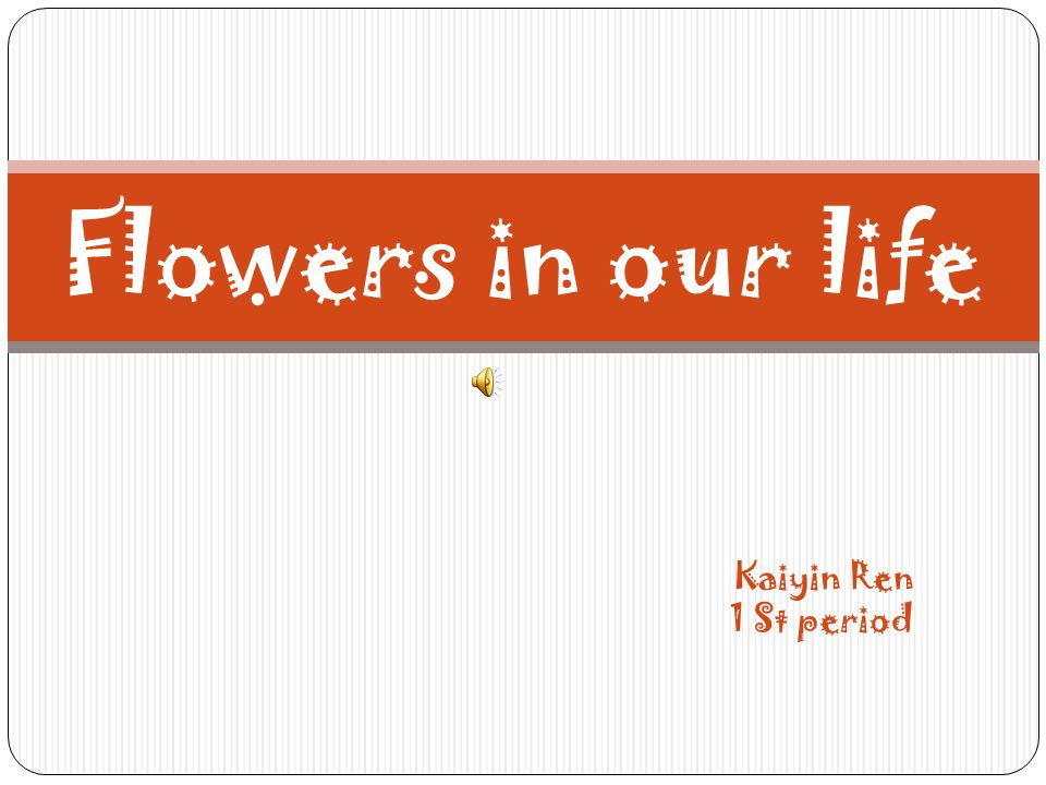 Kaiyin Ren 1 St period Flowers in our life