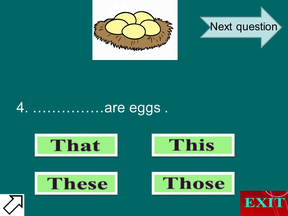 4. ……………are eggs. Next question