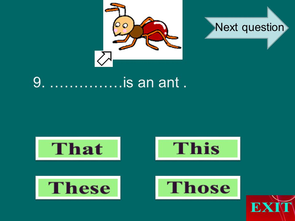 9. ……………is an ant. Next question