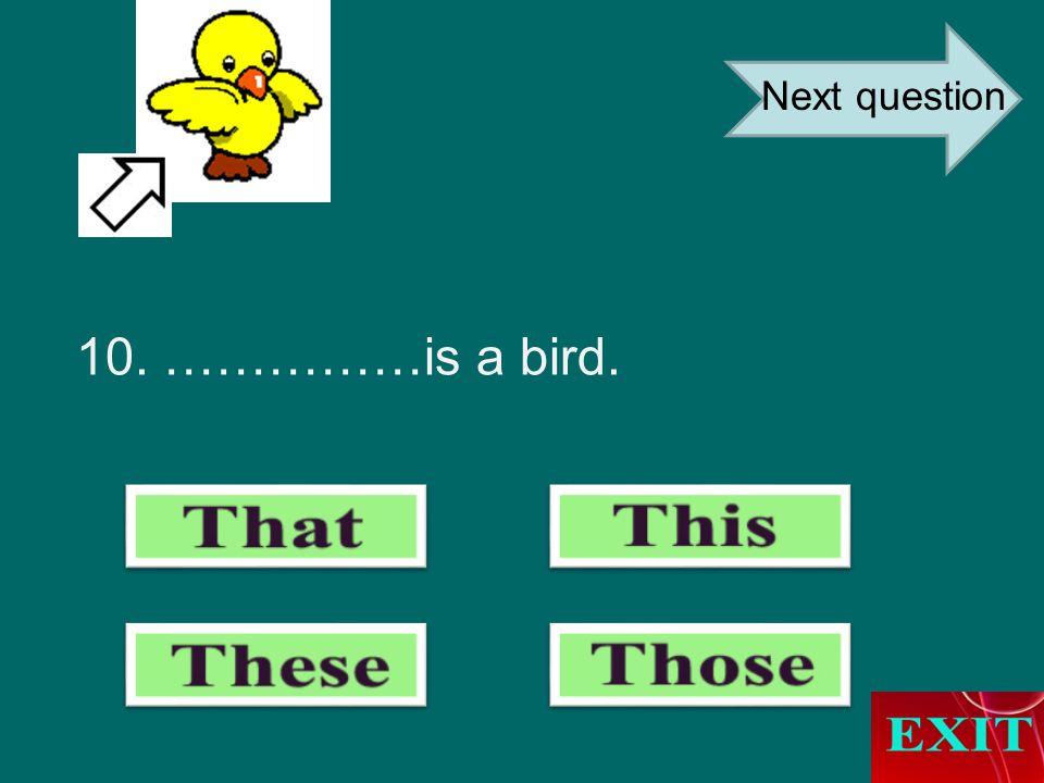 10. ……………is a bird. Next question
