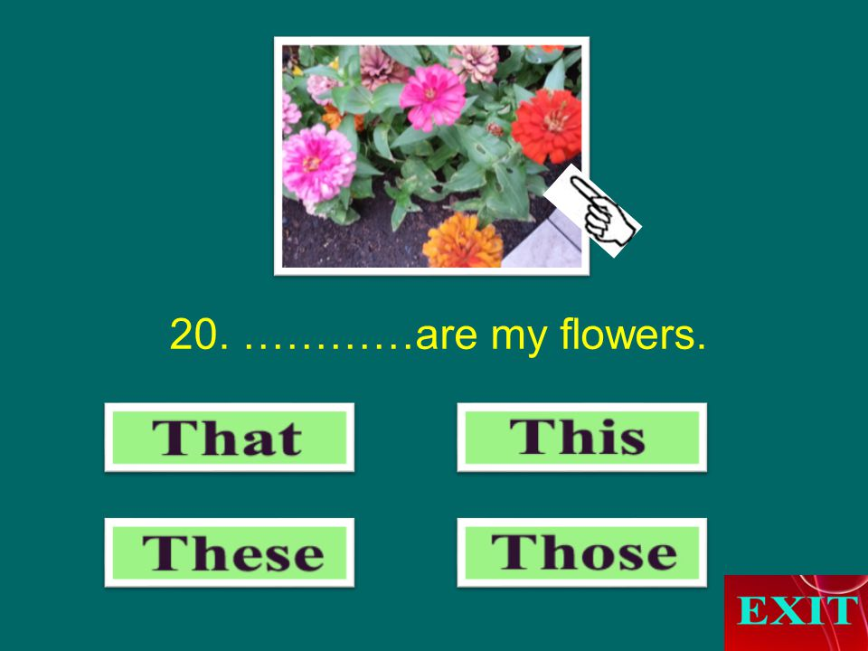 20. …………are my flowers.