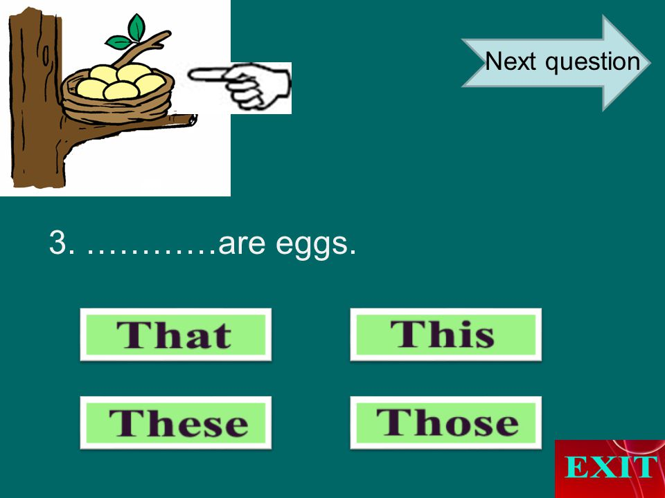 3. …………are eggs. Next question