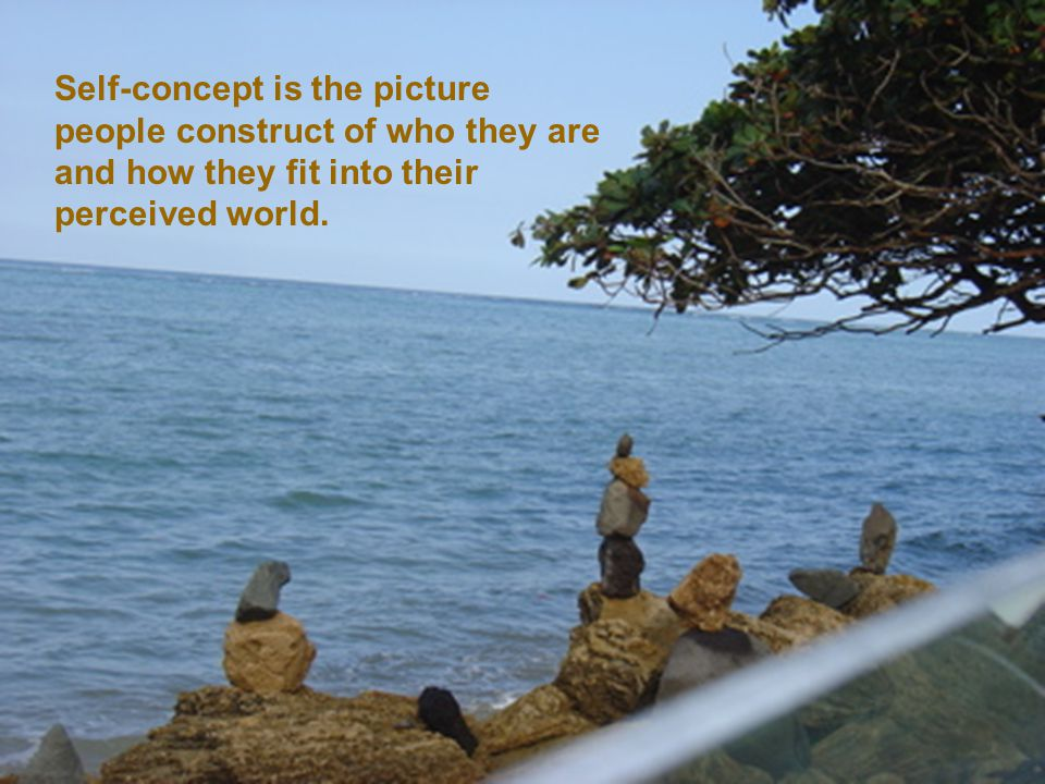 Self-concept is the picture people construct of who they are and how they fit into their perceived world.