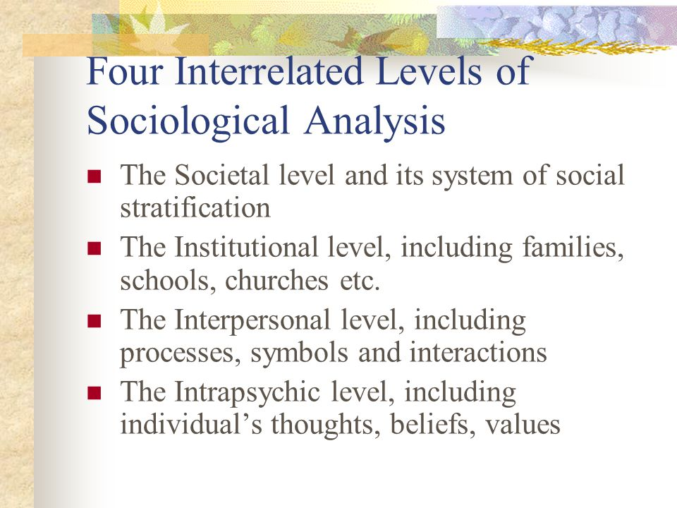 Four Interrelated Levels of Sociological Analysis The Societal level and its system of social stratification The Institutional level, including famili
